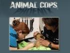 Veterinární policie: Phoenix (Animal Cops: Phoenix)