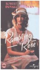 Popínavá růže (Rambling Rose)