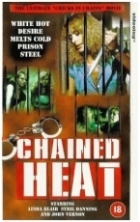 Peklo za mřížemi (Chained Heat)
