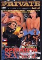 Private Gold: Operation Sex Siege (Private Gold 24: Operation Sex Siege)