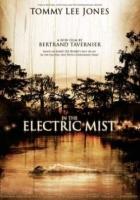 V elektrizující mlze (In the Electric Mist)