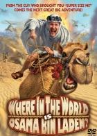 Kde se sakra skrývá Usáma Bin Ládin? (Where in the World Is Osama Bin Laden?)