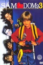 Sám doma 3 (Home Alone 3)