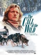 Volání divočiny (The Call of the Wild: Dog of the Yukon)