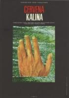 Červená kalina (Kalina krasnaja)