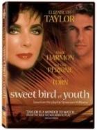 Sladké ptáče mládí (Sweet Bird of Youth)