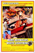 Na straně zákona (White Lightning)