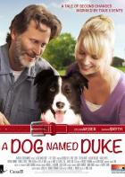 Pes jménem Duke