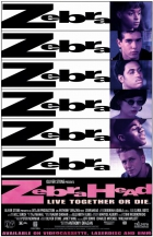 Zebří hlava (Zebrahead)