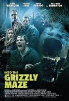 Grizzly zabiják (Into the Grizzly Maze)