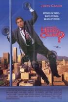 Kdo je Harry Crumb? (Who´s Harry Crumb)