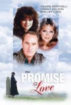 Slib lásky (The Promise of Love)