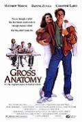 Anatomie pana člověka (Gross Anatomy)