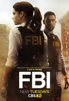 TV program: FBI