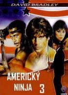 TV program: Americký ninja 3 (American Ninja 3: Blood Hunt)