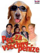 TV program: Pes za všechny peníze (Bailey's Billion$)