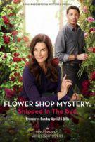 TV program: Záhada v květinářství: Utnuto v počátku (Flower Shop Mystery: Snipped in the Bud)