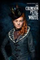 TV program: Kvítek karmínový a bílý (The Crimson Petal and the White)