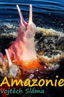TV program: Netvoři Amazonie