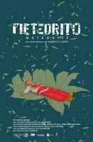 Meteorit (Meteorite)