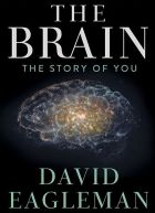 TV program: Cesta do hlubin mozku (The Brain With Dr. David Eagleman)