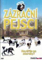 TV program: Zázrační pejsci (Miracle Dogs)