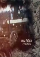 TV program: Jan Žižka z Trocnova