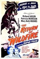 The Return of Wildfire