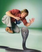 TV program: Austin Stevens - Pán hadů (Snakemaster)