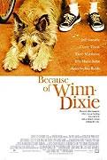 TV program: Co způsobil Winn-Dixie (Because of Winn-Dixie)