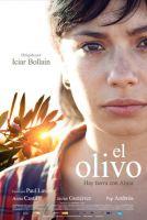 TV program: Olivovník (El olivo)