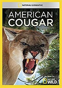 TV program: Puma americká (American Cougar)