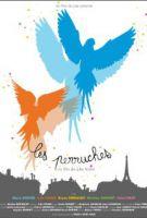 TV program: Papoušci (Les perruches)