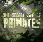 TV program: Soukromý život primátů (Among the Apes)