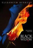 TV program: Černá vdova (Black Widow)