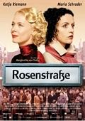 TV program: Rosenstrasse