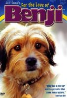 TV program: Benji 2 - Dobře utajený kód (For the Love of Benji)