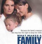 TV program: Kauza: Dítě (What Makes a Family)