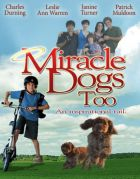 TV program: Zázrační pejsci 2 (Miracle Dogs Too)