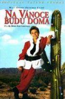 TV program: Na Vánoce budu doma (I'll be Home for Christmas)