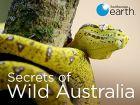 Tajemství divoké Austrálie (Secrets of Wild Australia)