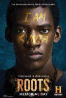 TV program: Kořeny (Roots)