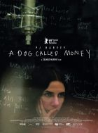 A Dog Called Money