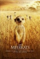 TV program: Surikaty (The Meerkats)