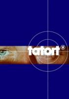 TV program: Místo činu: Ztráta kontroly (Tatort: Nichts mehr im Griff)