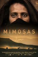 Mimózy (Mimosas)