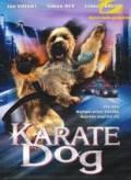 TV program: Karate Dog (The Karate Dog)