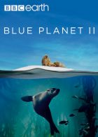 TV program: Modrá planeta II (Blue Planet II)