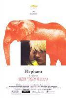 TV program: Slon (Elephant)