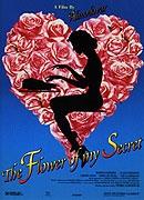 TV program: Květ mého tajemství (La Flor de mi secreto)